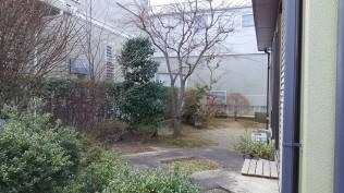 周囲を和風の樹々が囲みます。