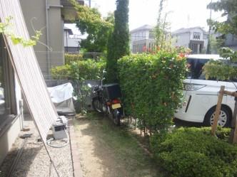 駐車場奥の生垣の裏が駐輪場になっていました