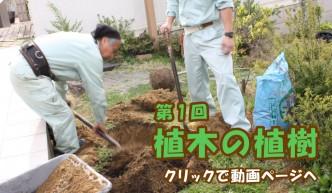 第1回 植木の植樹