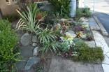 入口横の植栽